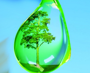 вода - сама жизнь на планете Земля